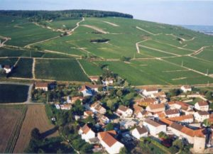 A Tour and Tasting of 7 Champagnes