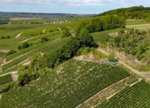 A Tour and Tasting of 3 Champagnes